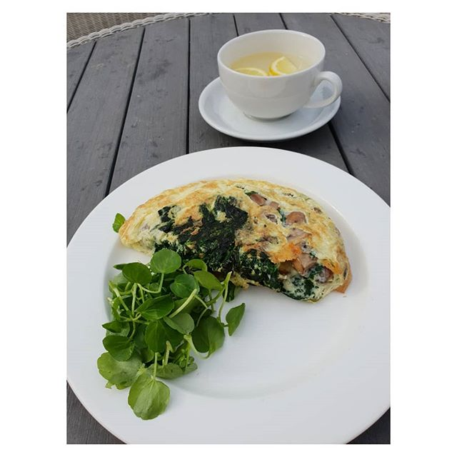 Healthy protein breakfast after morning Pilates to keep energy up during the day.  Omelette with spinach, mushrooms and cheese  and hot water with lemon to start.  Leaving 12 hours after the last meal the day before so the body has a chance to digest and if you like- giving it a chance to fast in that period
