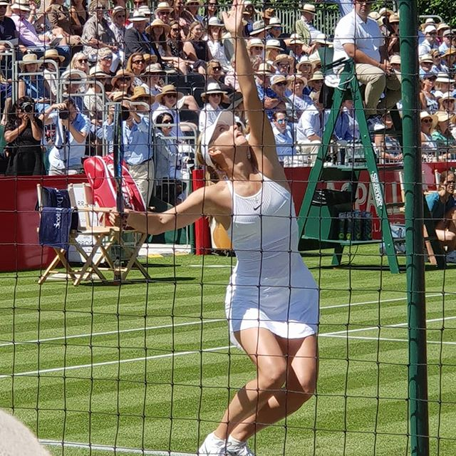 Maria Sharapova playing at the Aspall Tennis classic Hurlingham London. . . . . . .