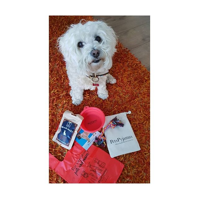 Thank you to @thepetspyjamas for my goody bag for taking part in the best Rescue dog competition @thehurlinghamclub . . . . x